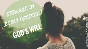 STUGGLE IN GODS WILL BLOG BANNER